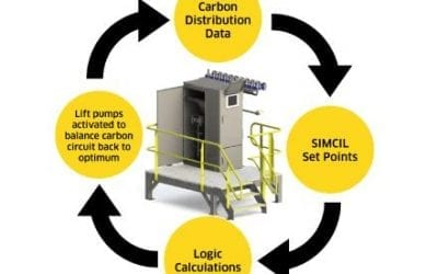 How can soluble gold losses from your carbon circuit be reduced?